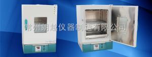 202系列 电热恒温干燥箱