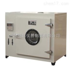 101 恒温干燥箱