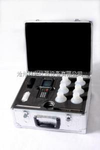 NJCL-H 海砂氯离子含量快速测定仪价格