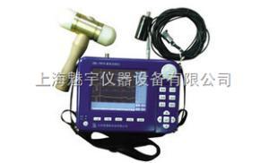 基樁動測儀ZBL-P810