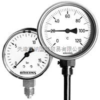 全 德國BITHERMA電阻溫度計