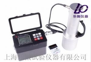 HD-2005便携式χ-γ剂量率仪