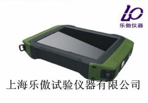 JWZJ-810低应变桩基测试仪参数