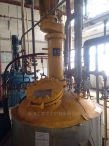 工业用磁力搅拌高压釜