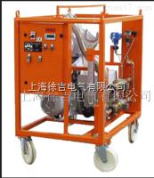 SF6 上海 SF6大容量羅茲泵真空泵裝置廠家
