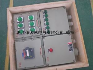 总装机控制6路分电机设备防爆配电箱非标