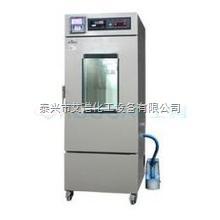 YWS-500 藥品穩定性試驗箱YWS-500