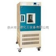 YWS-150S 藥品穩定性試驗箱YWS-150S
