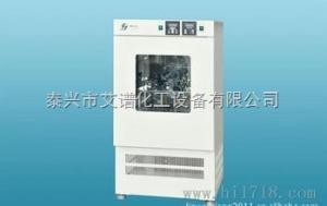 GDH-2025A 高低温试验箱GDH-2025A