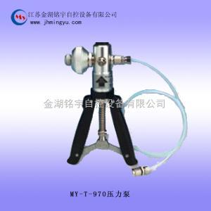 壓力泵MY-T-795廠家直銷-金湖銘宇自控設備有限公司