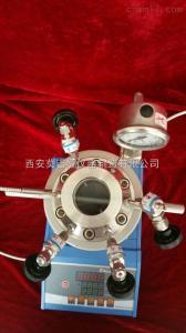 WGHX-100ml 微型磁力攪拌可視高溫高壓反應釜