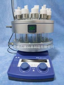 12位25ml 平行合成反應器MJN12-25ML