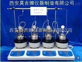 25ml 平行高壓反應釜