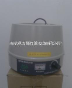DZTW-250ml 电子调控电热套DZTW-250ml