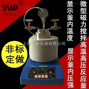 微型磁力搅拌高温高压反应釜
