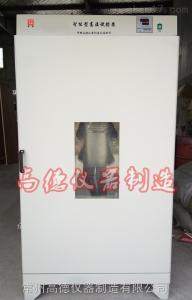 DHG-1000A 電熱鼓風烘箱干燥箱廠家