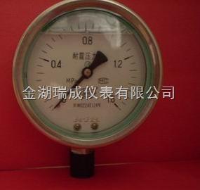YTN 不銹鋼耐振壓力表