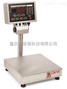 CKW6R55ZH 檢重臺秤參數