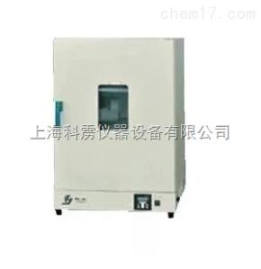 DHG-9036A 上海精宏 DHG-9036A干燥箱烘箱