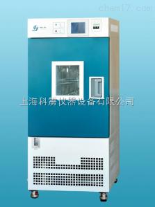 GDH-2050B 上海精宏 GDH-2050B高低温试验箱 烘箱 实验箱