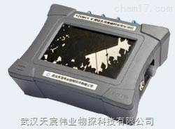 YZSMC6矿用本安型锚杆锚索无损检测仪