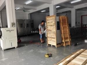 气体试验箱/气体老化箱