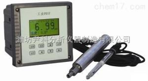 YK-6658 工业PH计/在线PH计/ORP分析仪/ORP检测