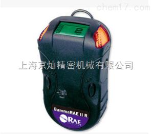 华瑞GammaRAE II R χ、γ 射线仪