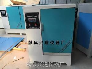 混凝土标养室自动控制仪