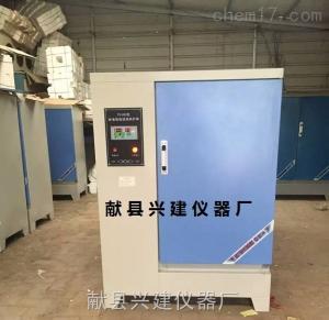 负离子加湿式养护室,混凝土养护室控制仪BYS-III型