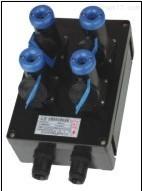 FXS防水防尘防腐电源插座箱/新黎明防腐电源插座箱