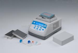 DH300 干式恒温器(恒温金属浴)