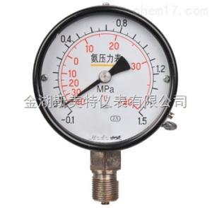 YA-100氨用压力表(0-6MPa)