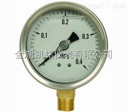 YTN-150ZQ耐震压力表