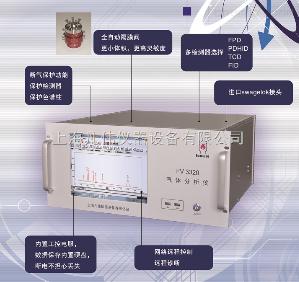 在线气相色谱仪