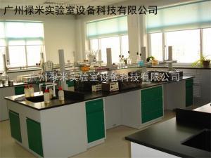 LUMI-SJ335 佛山醫院檢驗科實驗室設計工程