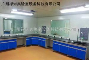 LUMI-SYT1030AR 广东东莞钢木实验台厂家