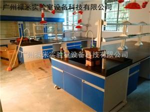 LUMI-SYT775 河北衡水钢木中央实验台生产厂家