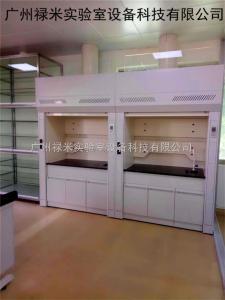 LUMI-TFG1133 西藏拉萨实验室全钢通风柜生产厂家