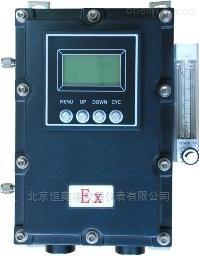 HAD-SOEF 在线式防爆高纯氧分析仪 HAD-SOEF