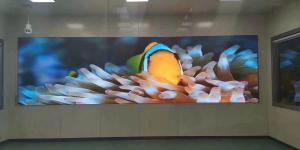 报告厅/会议室安装p1.667LED电子屏报价
