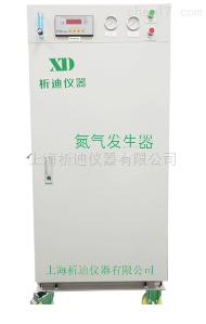 氮气发生器XDN-30L