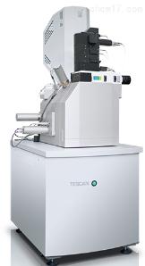 witec WITec RISE拉曼-扫描电镜联用系统