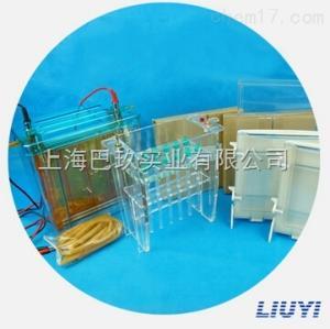 北京六一一体式双向蛋白电泳仪DYCZ-26C型号的报价
