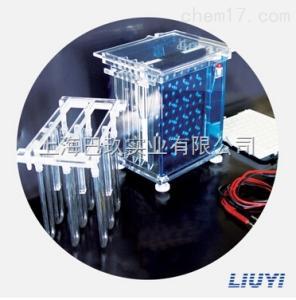DYCZ-40A型转印电泳仪北京六一转印电泳仪(槽)(大号)_