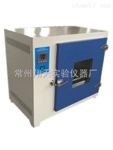 303-2A 电热恒温培养箱