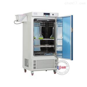 ZHS.CP-300 恒温恒湿多功能二氧化碳培养箱