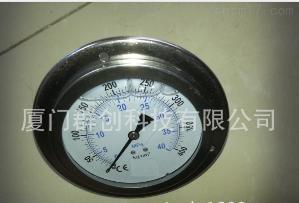 軸向帶邊耐震壓力表 YN-100ZT