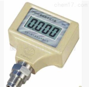 DPM100F 内电源DPM100F齐平膜式数字压力表