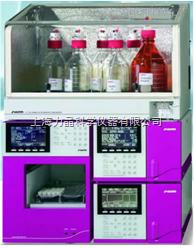 全自动氨基酸分析仪 S433D